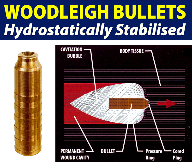 Huntington Die Specialties :: Bullets :: Woodleigh Bullets